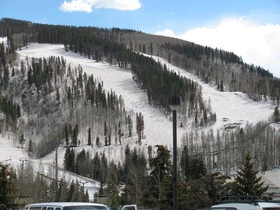 Vail Mountain Resort : Vail ski slopes