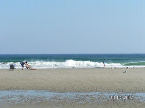 Ogunquit Beach Foto