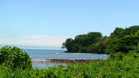 写真タベウニ島枚