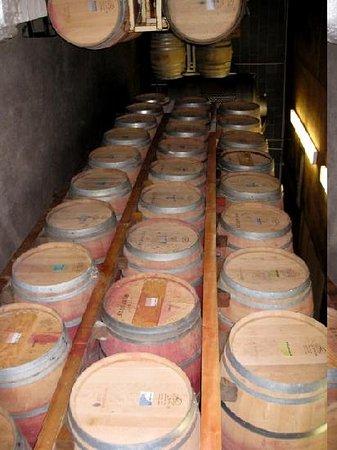 Platypus Wine Tours: Barrels at Casa Nuestra
