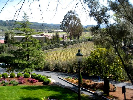 Platypus Wine Tours: View from St. Clement winery porch