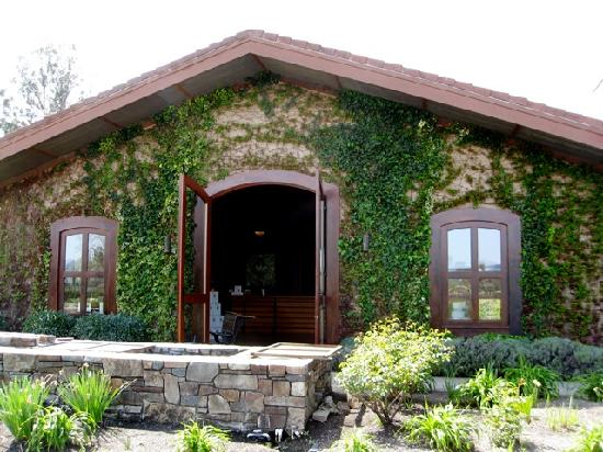 Platypus Wine Tours: Rutherford Grove winery