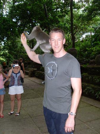 Sacred Monkey Forest Sanctuary: feeding the monkeys
