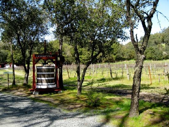 Casa Nuestra Winery and Vineyards: Casa Nuestra