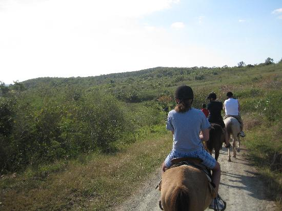BioParque Rocazul: Horseback riding in the park