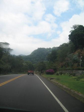 Volcan, Panama/Panamá: Hacia Cerro Punta--Bambito