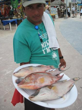 Mahahual, México: You get to see your food before they actually cook it! Majahual, Costa Maya, Mexico