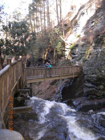 Bushkill Falls: DSCN1234