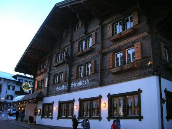 Chalet Hotel Steinbock Photo
