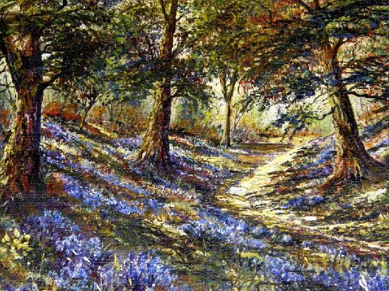 Ivy Mount Guest House: bluebell wood by ken taylor