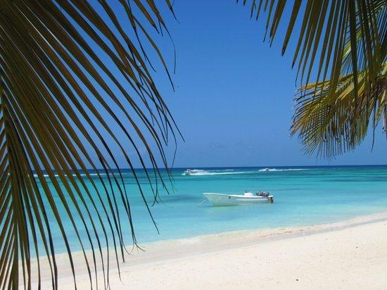 La Romana, Dominican Republic: saona