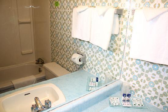 Empress Inn & Suites : Washroom