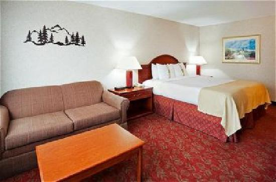 Holiday Inn Asheville - Biltmore East: King Size Bed with Sofa Sleeper