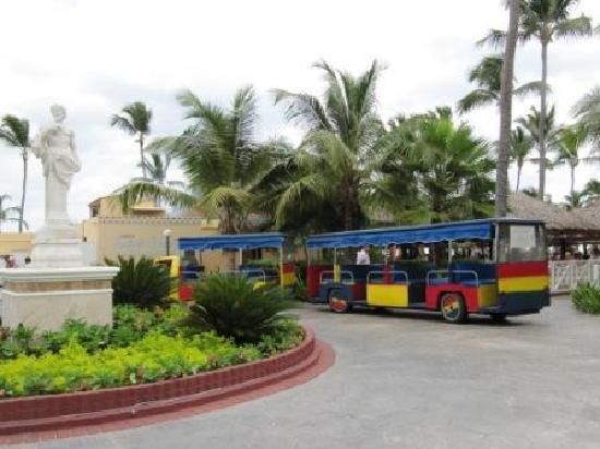 Grand Bahia Principe Bavaro: la végétation autour des pavillons