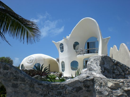 The Shell House Guest House Reviews Isla Mujeres Mexico