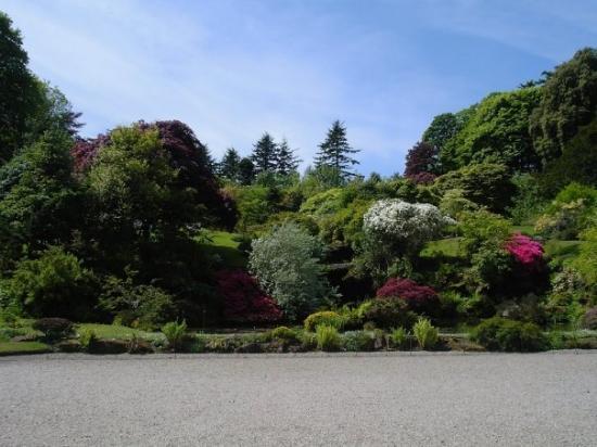 Rothesay, UK: Wee Garden