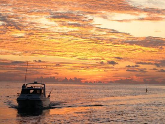 Bilde fra Meeru Island Resort & Spa