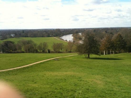 Richmond-upon-Thames, UK: The park next to me (the biggest in London)