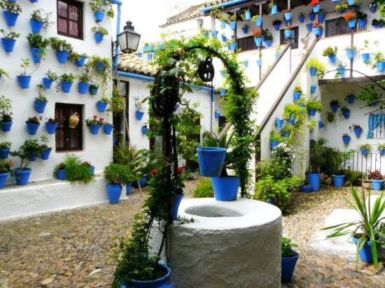 Patio andaluz photo de casa andalusi cordoue tripadvisor for Patios andaluces decoracion