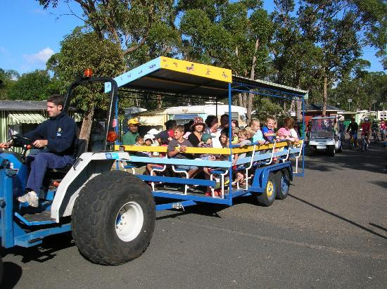 NRMA Ocean Beach Holiday Resort: Tractor Rides