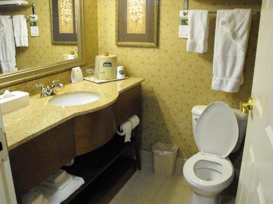 Wingate by Wyndham Tuscaloosa: bathroom
