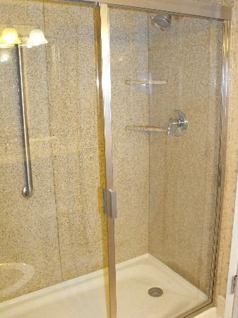 Wingate by Wyndham Tuscaloosa: shower/no bathtub