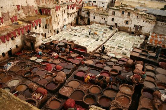 Medina of Fez: the famous leather dyers