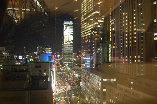 Hotel Ryumeikan Tokyo: vistas desde la planta 15