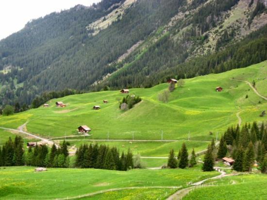 Wengen, Switzerland: 鄉間小屋散落在山丘上, 完全溶入大自然之中.