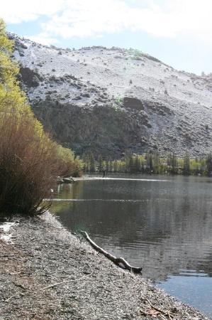 June Lake Photo