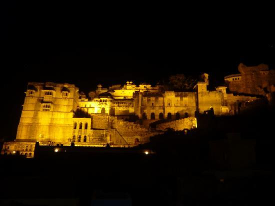 Tarah Homestay and Guest House : Night view on the palace