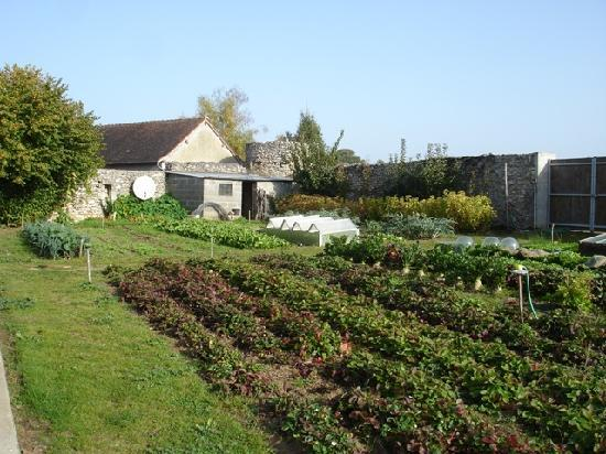 Truyes, France: part of the vegetable garden
