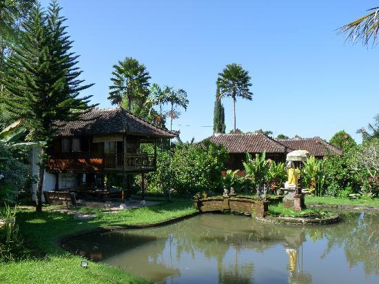 Puri Lumbung Cottages: Vue générale de l'hotel depuis la terrasse