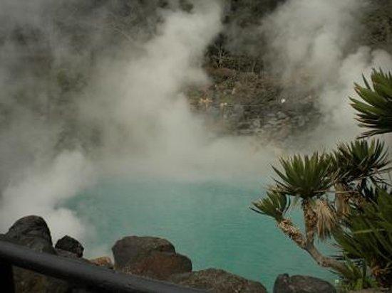 Hells of Beppu : 海地獄