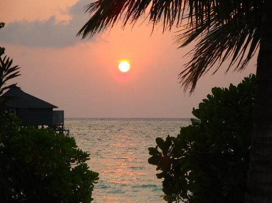 Kuredu Island Resort & Spa: sunset in paradise