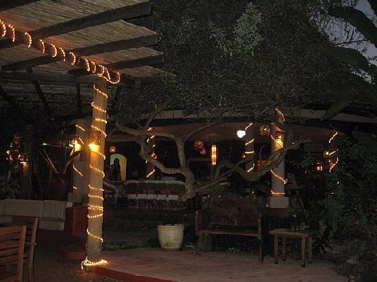 Mar de Jade Retreats Wellness Vacation: Dining Area, evening