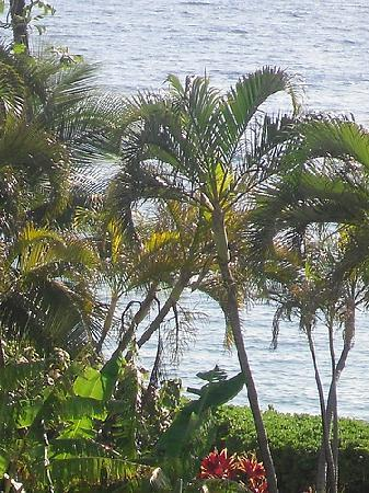Royal Lahaina Resort: View from our balcony
