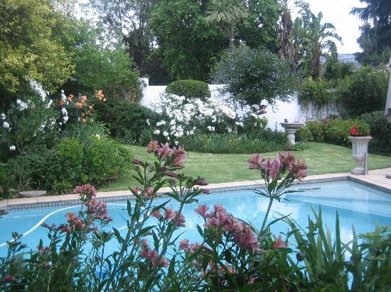 Rutland House Bed & Breakfast: swimming pool and garden