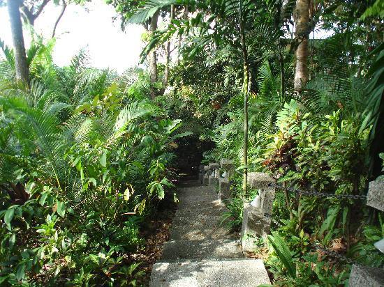 Hotel Costa Verde : Costa Verde CR walkway for Building B