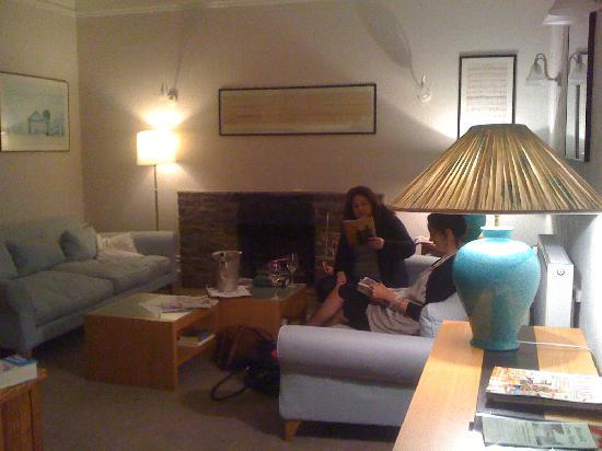 Woody Bay Hotel: Very comfortable sitting room with fire and friendly cat!