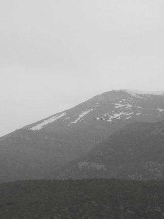 Provincia de Huesca, España: Raptor feeding station, Santa Cilia de Panzano - Sierra y Canones de Guara