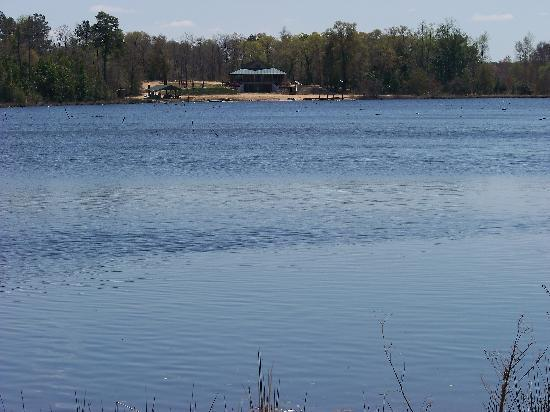 Kite, GA: Lake Bobville