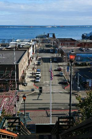 Port Angeles, WA: Few steps from town and the ferry