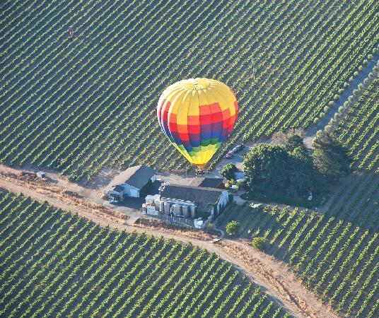 O'Brien Estate Winery: A Photo from a Balloon