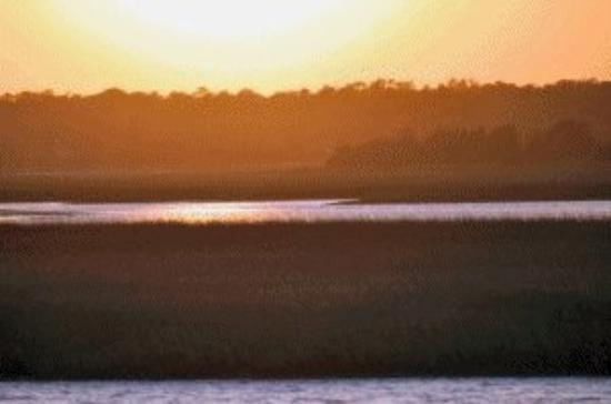 Oak Island照片