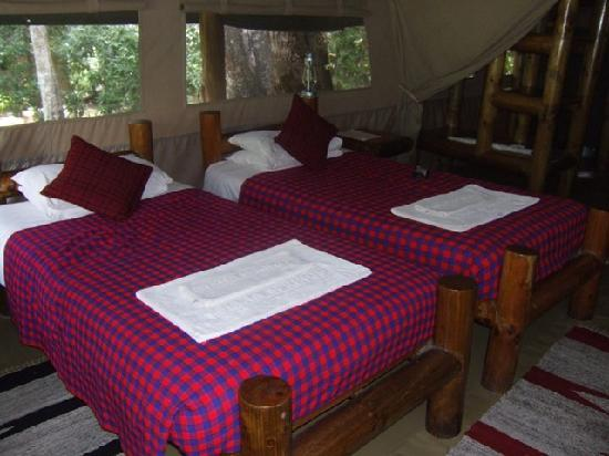Siana Springs: Comfortable beds in spacious tent.