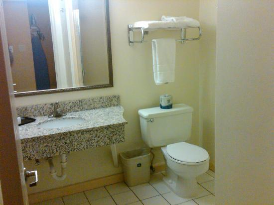 Best Western Town House Lodge: Bathroom