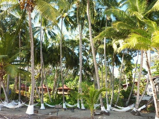 Tango Mar Beachfront Boutique Hotel & Villas: l'hotel vu de la plage
