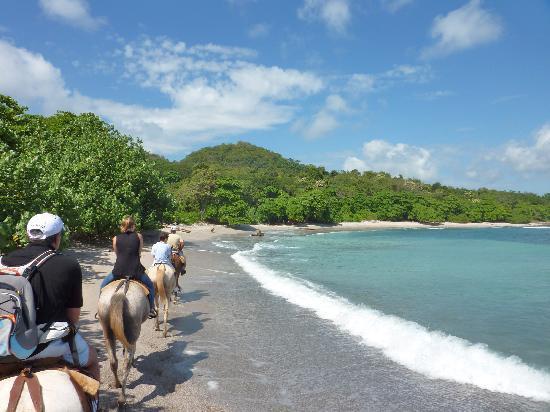 Tango Mar Beachfront Boutique Hotel & Villas: promenade à cheval sur l'1 des plages aux alentours