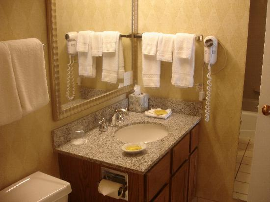 Residence Inn Chicago Deerfield: Masterbath; downstairs